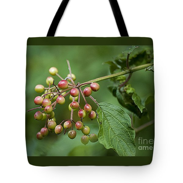 Tote Bag featuring the photograph High Bush Cranberry 20120703_106a by Tina Hopkins