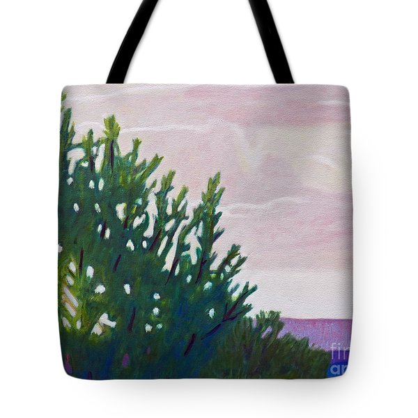 High Desert Glow Tote Bag