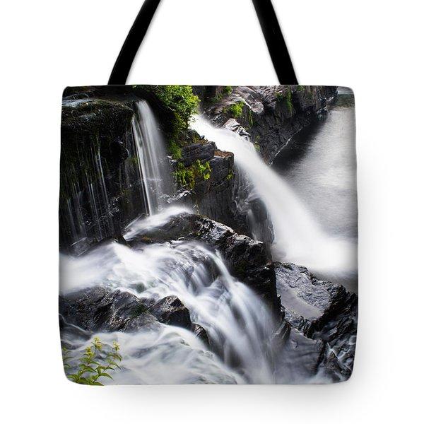 High Falls Park Tote Bag