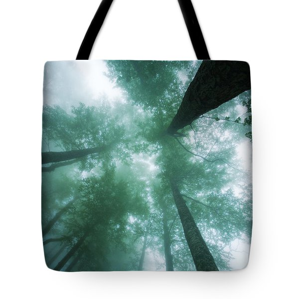 High In The Mist Tote Bag by Evgeni Dinev