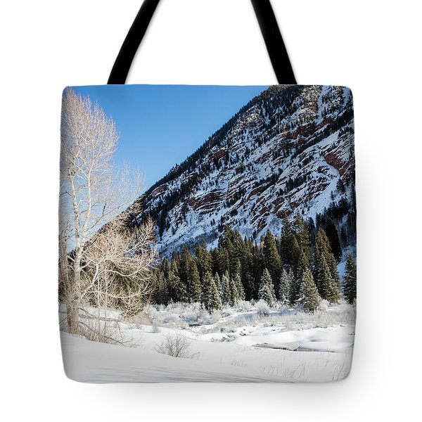 High In The Rockies Before Independence Pass Tote Bag