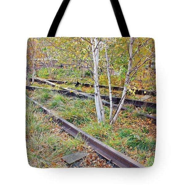 High Line Print 2 Tote Bag