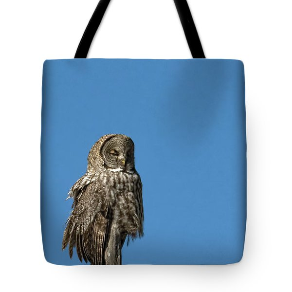 High Lookout Tote Bag