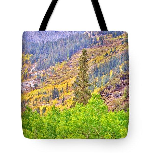 High Sierra Fall Colors Tote Bag