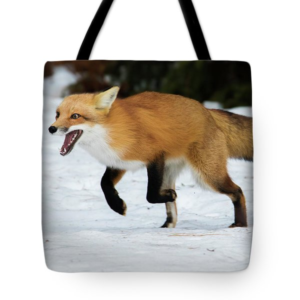 Tote Bag featuring the photograph High Speed Fox by Mircea Costina Photography
