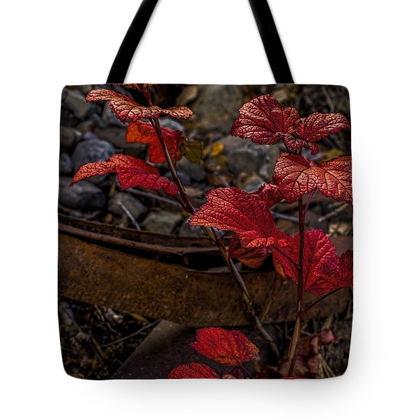 Highbush Cranberry Leaves Tote Bag