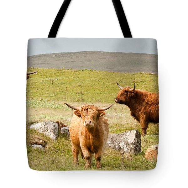 Highland Cattle Tote Bag by Colette Panaioti