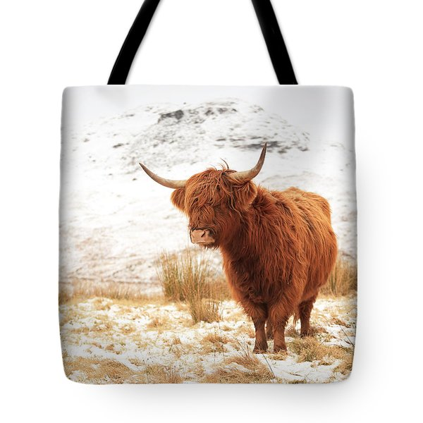 Highland Cow Tote Bag