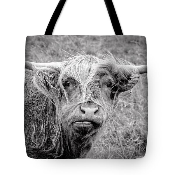 Highland Cow Tote Bag by Jeremy Lavender Photography