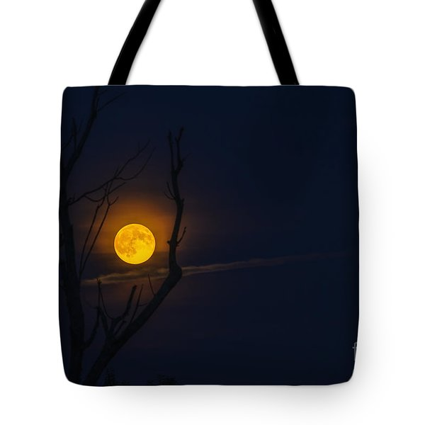 Highland Moon  Tote Bag