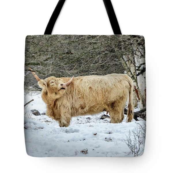 Highlander In Winter Tote Bag