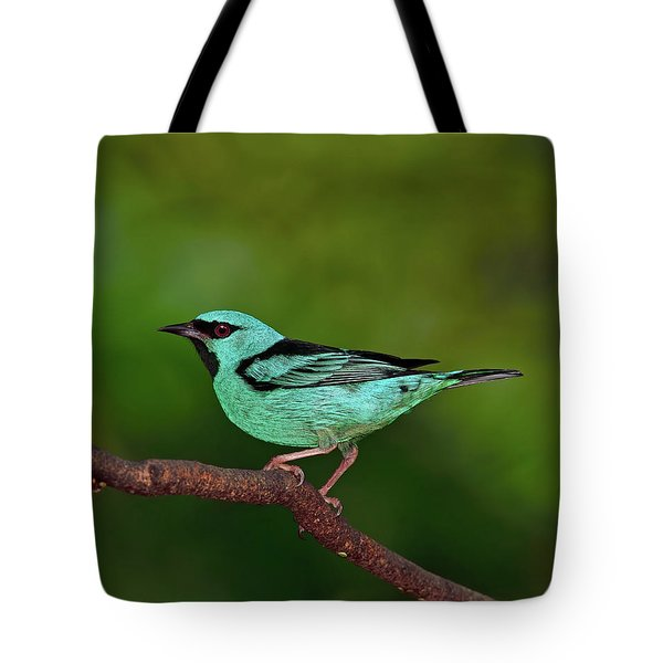 Highlight Tote Bag by Tony Beck