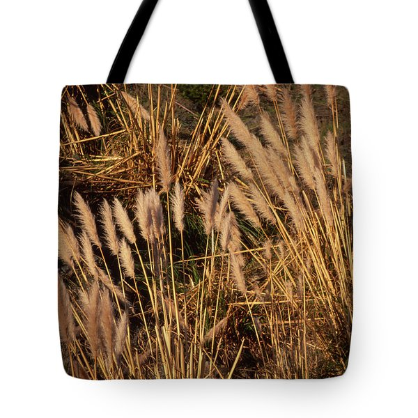 Highway One - Jenner California Tote Bag