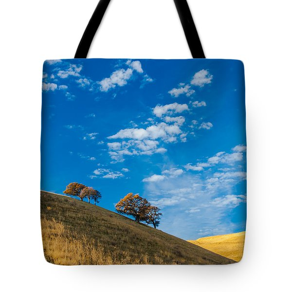 Hiking East Bay Hills Tote Bag by Marc Crumpler