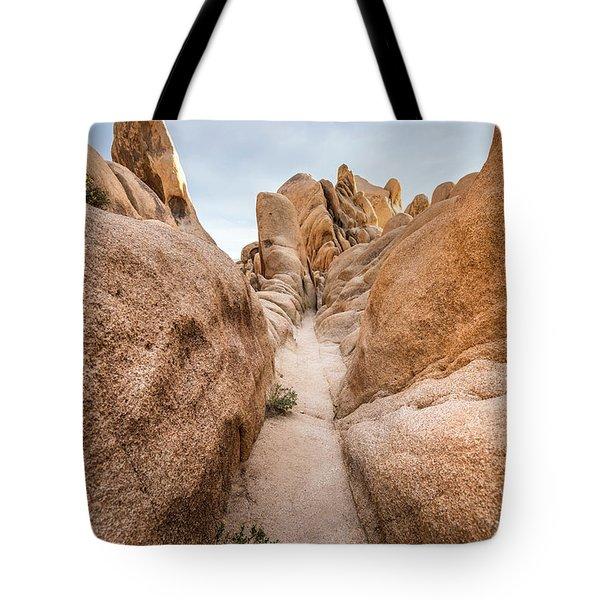 Hiking Trail In Joshua Tree National Park Tote Bag by Joe Belanger