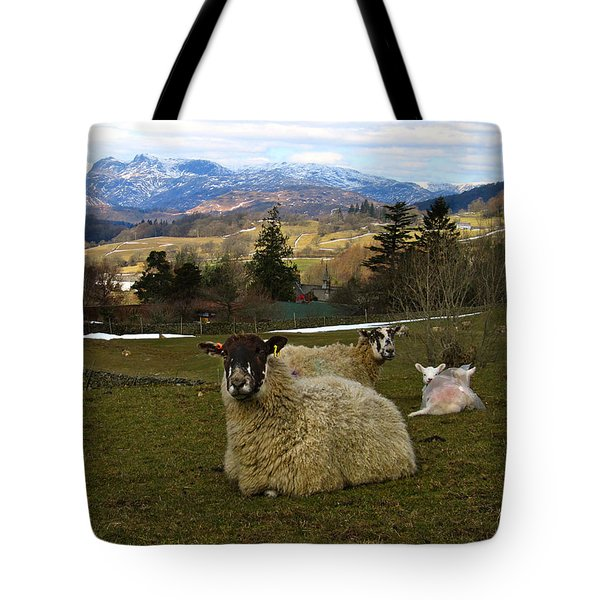 Hill Sheep Tote Bag