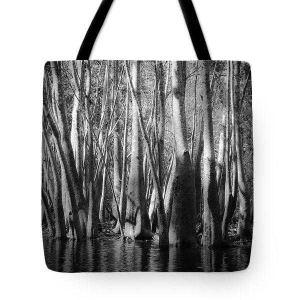 Hillsborough Zen Tote Bag