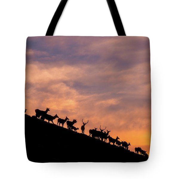 Tote Bag featuring the photograph Hillside Elk by Darren White