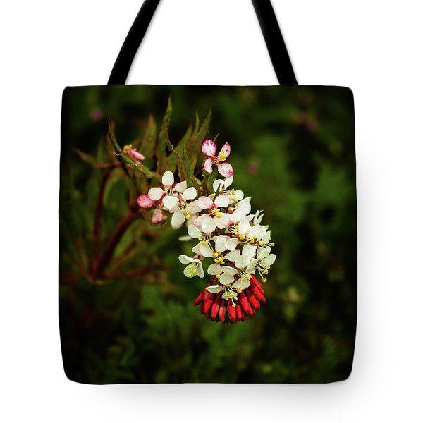 Hillside Surprise Tote Bag
