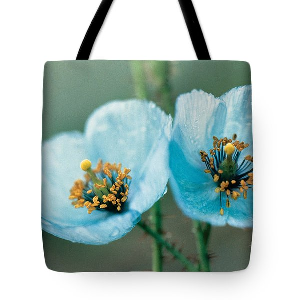 Himalayan Blue Poppy Tote Bag