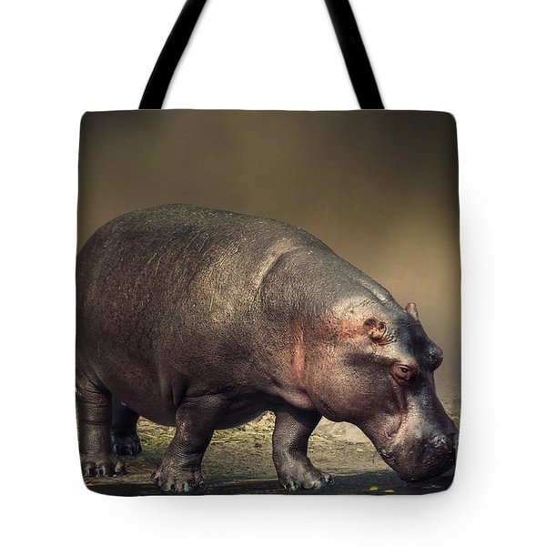 Tote Bag featuring the photograph Hippo by Charuhas Images