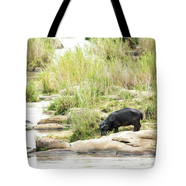 Hippo Drinking Out Of River Tote Bag