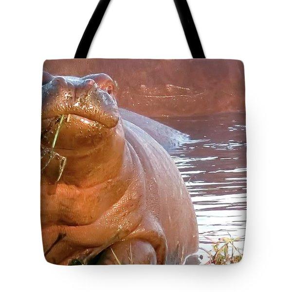 Hippo Snacks Tote Bag