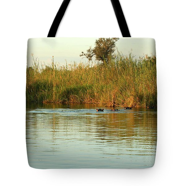 Hippos, South Africa Tote Bag