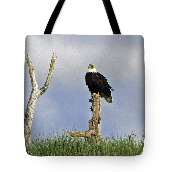 His Majesty Tote Bag by Pamela Patch