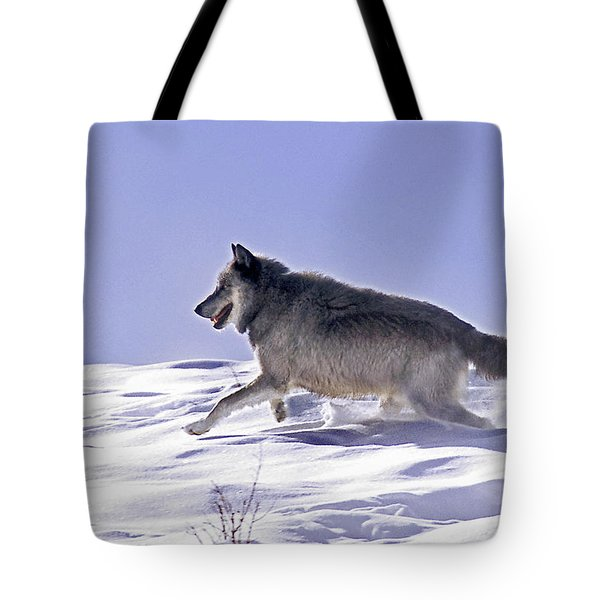 His Majesty Wolf 21m Tote Bag