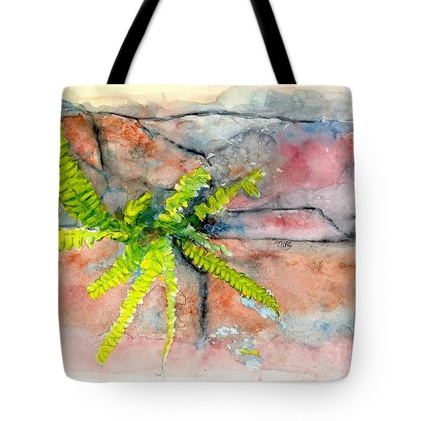 Historic Savannah Wall Weed Tote Bag