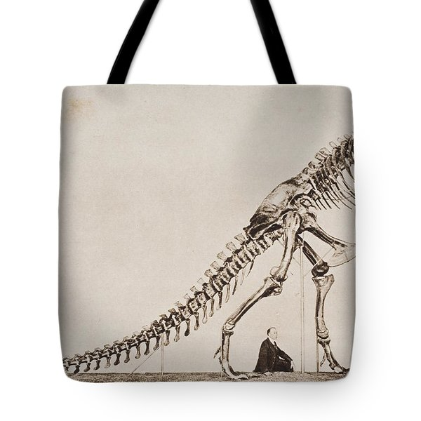 Historical Illustration Of Dinosaur Tote Bag