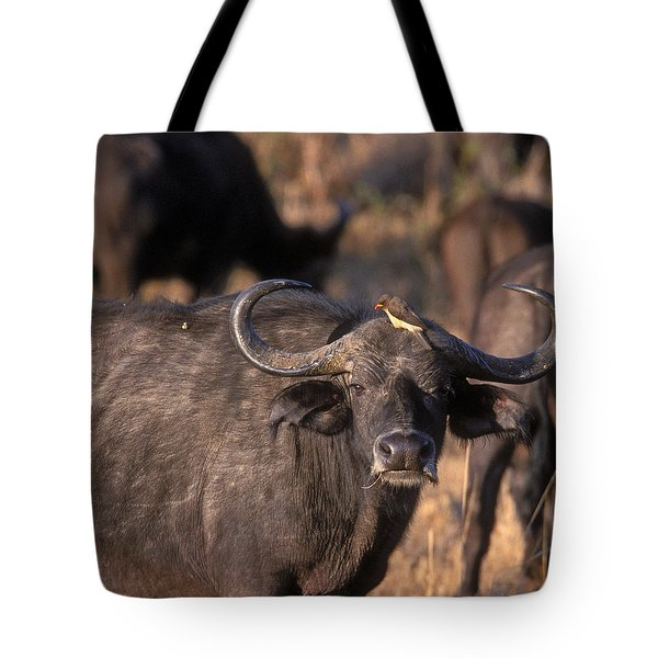 Hitching A Ride 1 Tote Bag by Sandra Bronstein