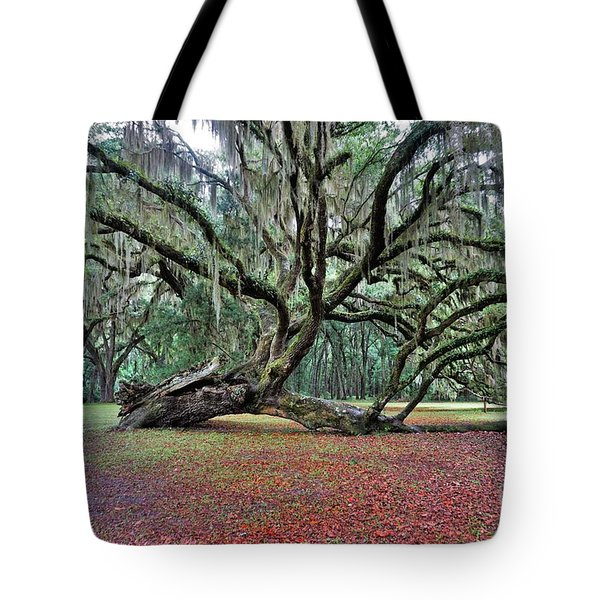 Hofwyl-broadfield Plantation2 Tote Bag