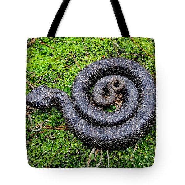 Hognose Spiral Tote Bag