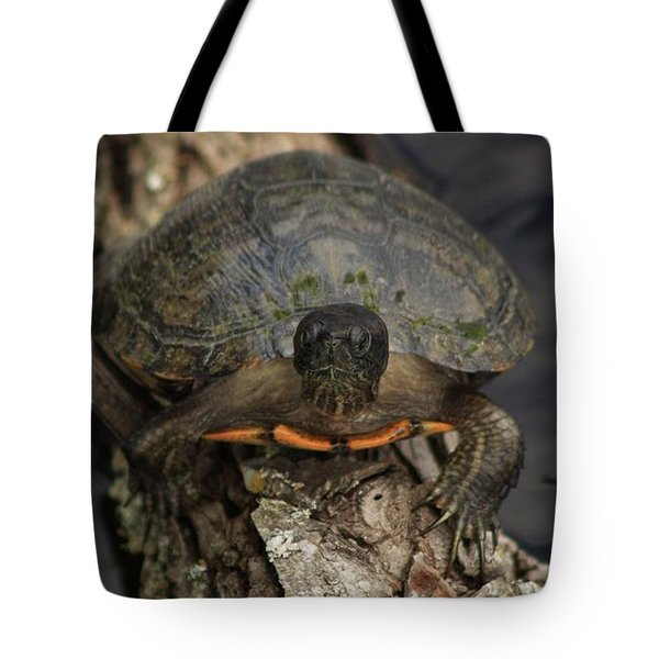 Holding On Tote Bag by Kim Henderson