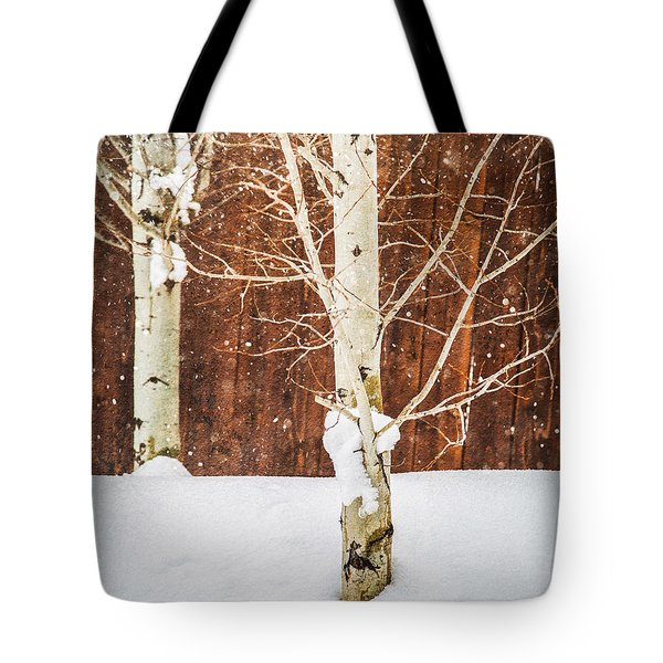 Holiday Aspens Tote Bag
