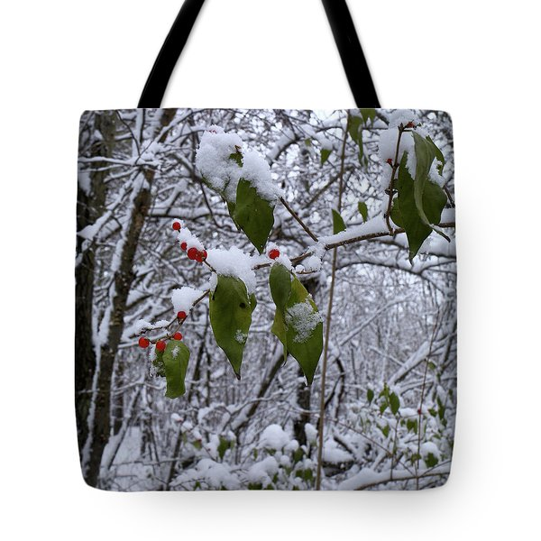 Holiday Colors Tote Bag by Scott Kingery