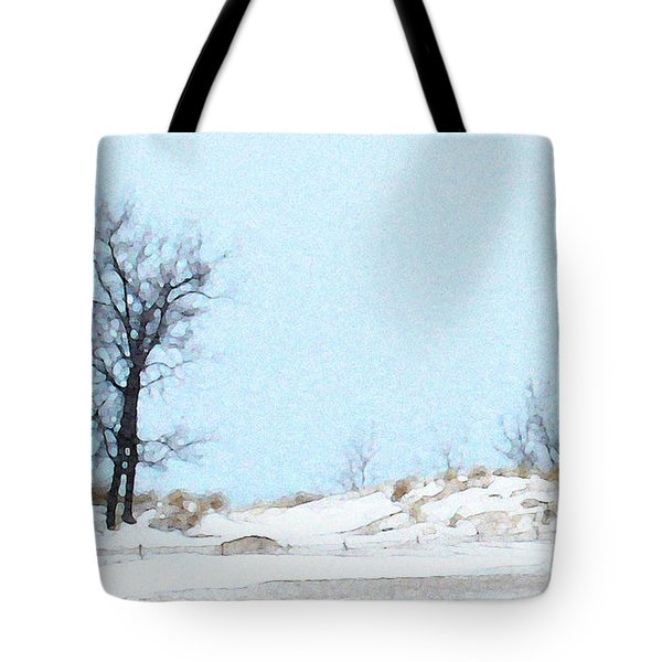 Tote Bag featuring the photograph Holland Harbor Light - View 3 by Linda Shafer