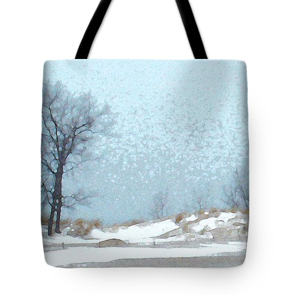 Tote Bag featuring the photograph Holland Harbor South Pierhead Lighthouse - View 4 by Linda Shafer