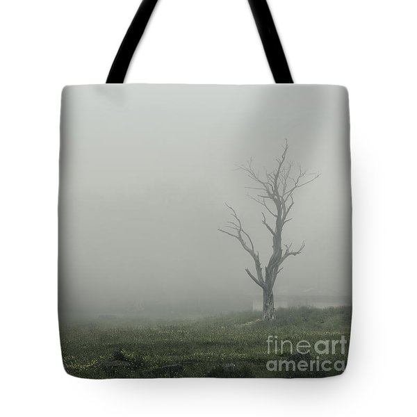 Hollow Tote Bag by Andrew Paranavitana