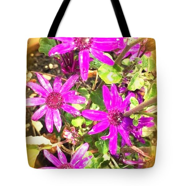 Hollywood Flower Stars Tote Bag