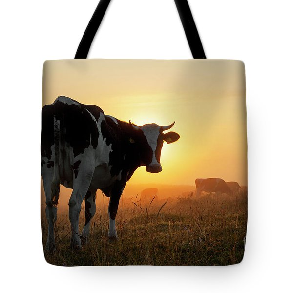 Holstein Friesian Cow Tote Bag