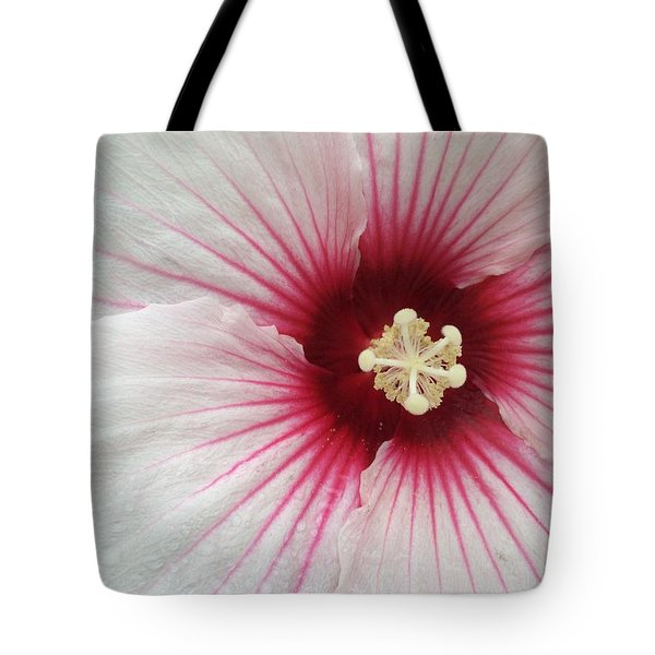 Holy Hibiscus Tote Bag by Emerald GreenForest