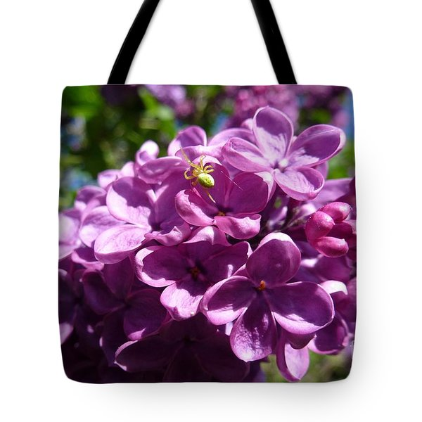 Home Of Spider Tote Bag