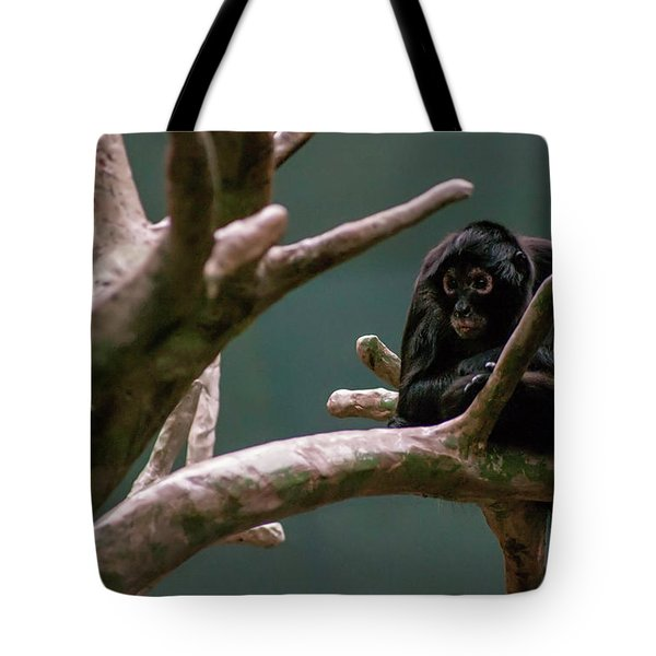 Home On The Limb Tote Bag