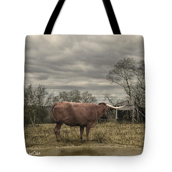 Tote Bag featuring the photograph Home On The Range by Don Olea