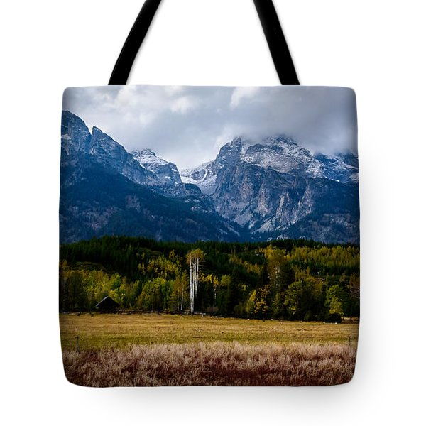 Home Sweet Home Tote Bag by Sandy Molinaro