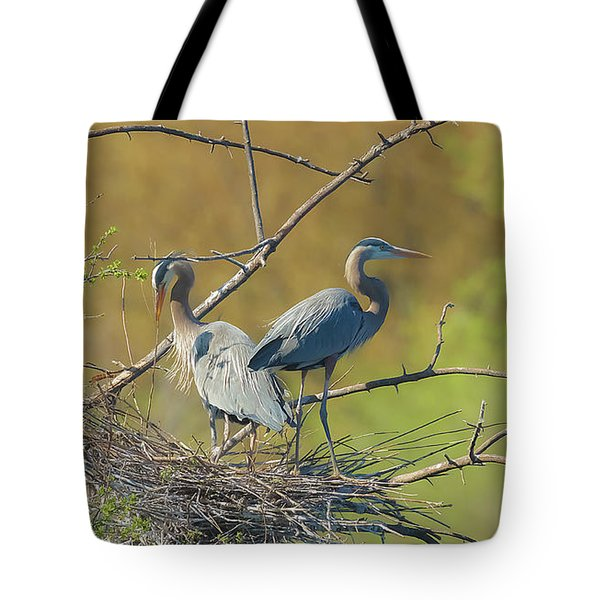 Home Town Blues Tote Bag by Kelly Marquardt