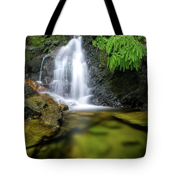 Homesite Falls Autumn Serenity Tote Bag